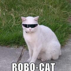 k_bot
